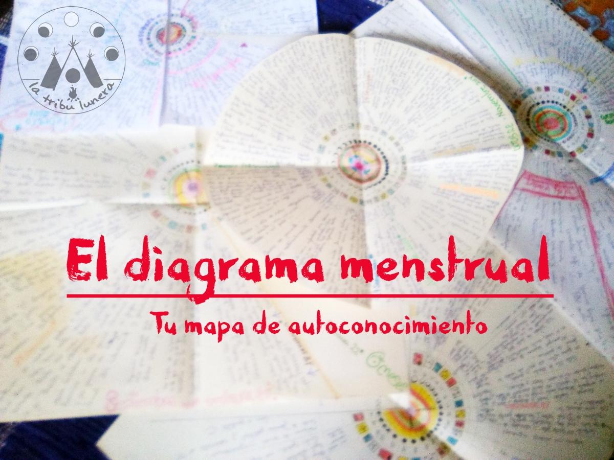 El diagrama menstrual: Tu amigo cíclico – La Tribu Lunera