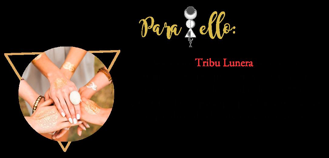 paraello1.png