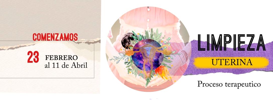 Limpieza uterina banner