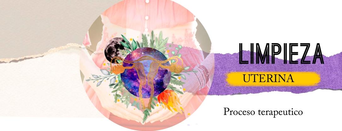 Limpieza uterina banner libre