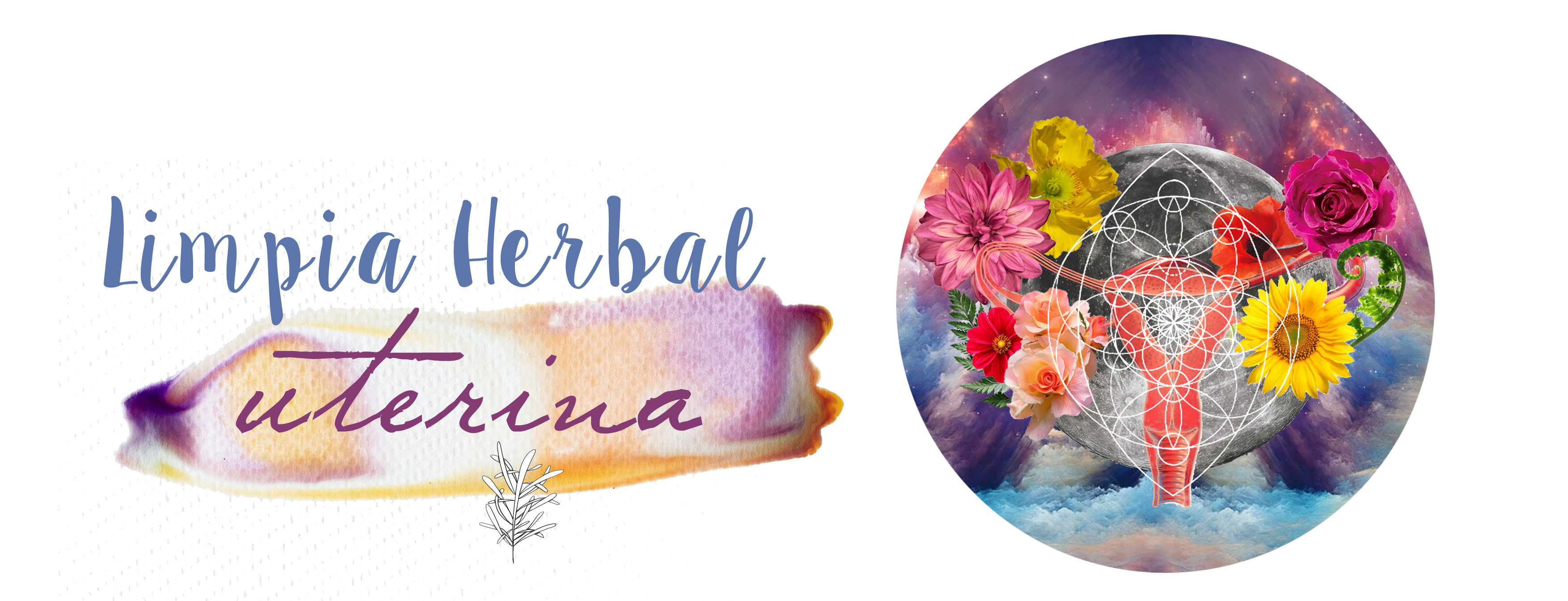 limpieza herbal AGENDA